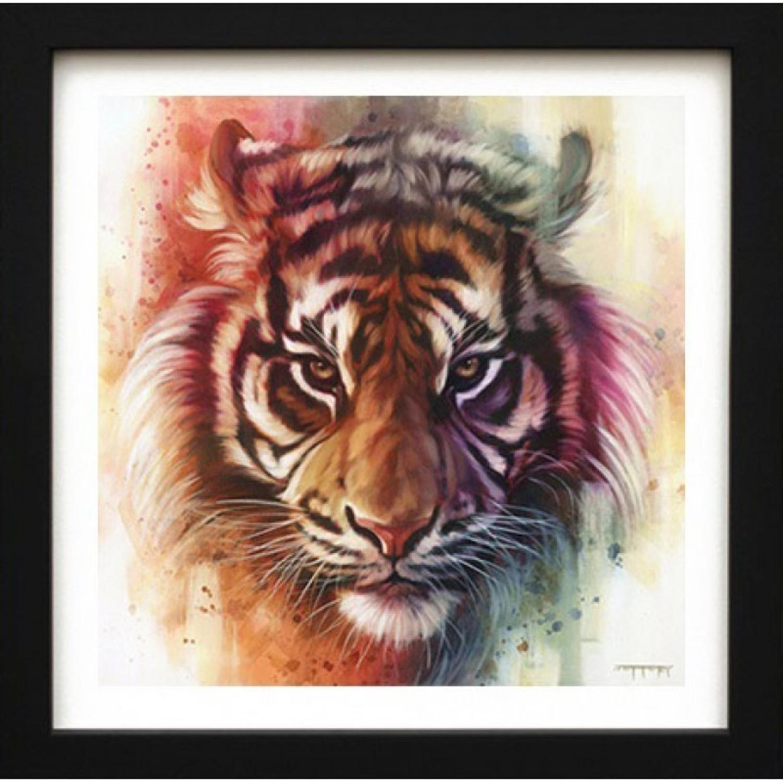 Eye Of The Tiger - Framed Canvas Art Print by Ben Jeffrey