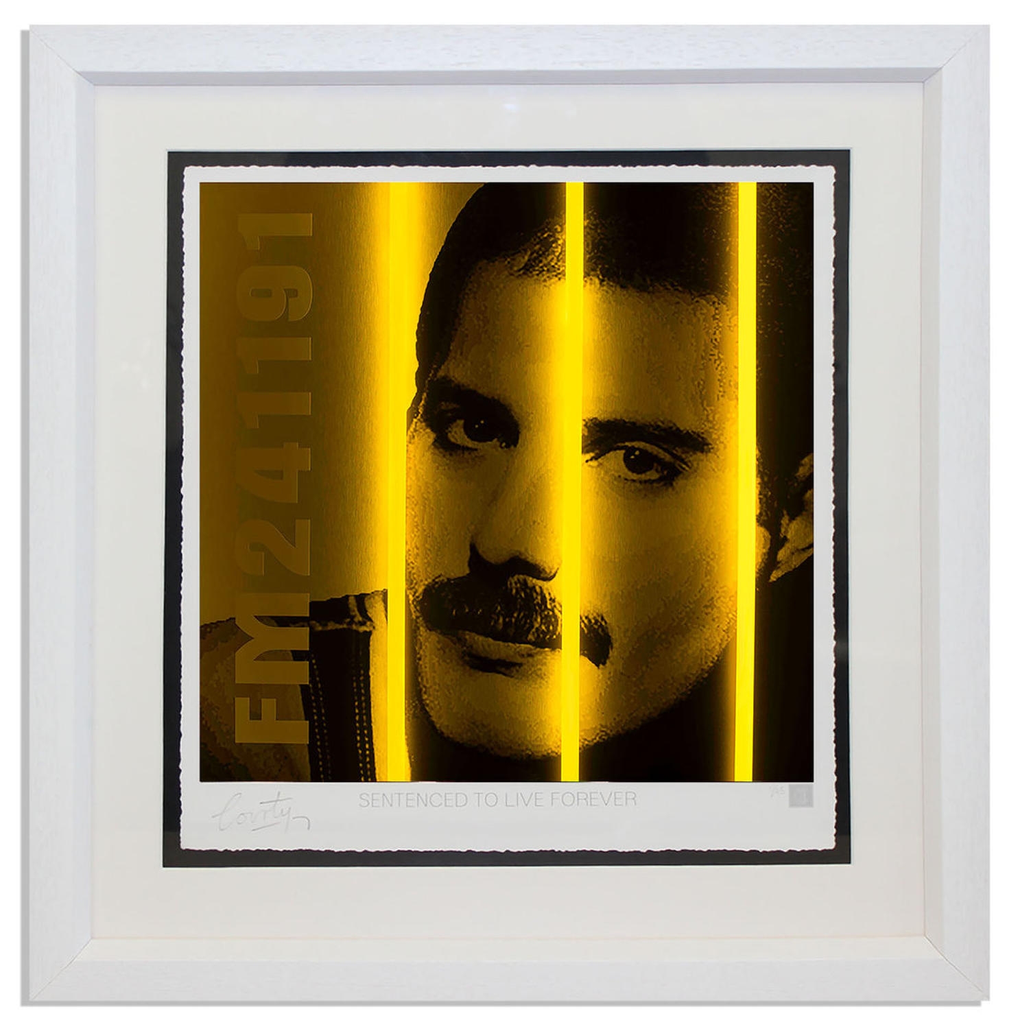 Courty - Freddy Mercury - Life Series framed art print