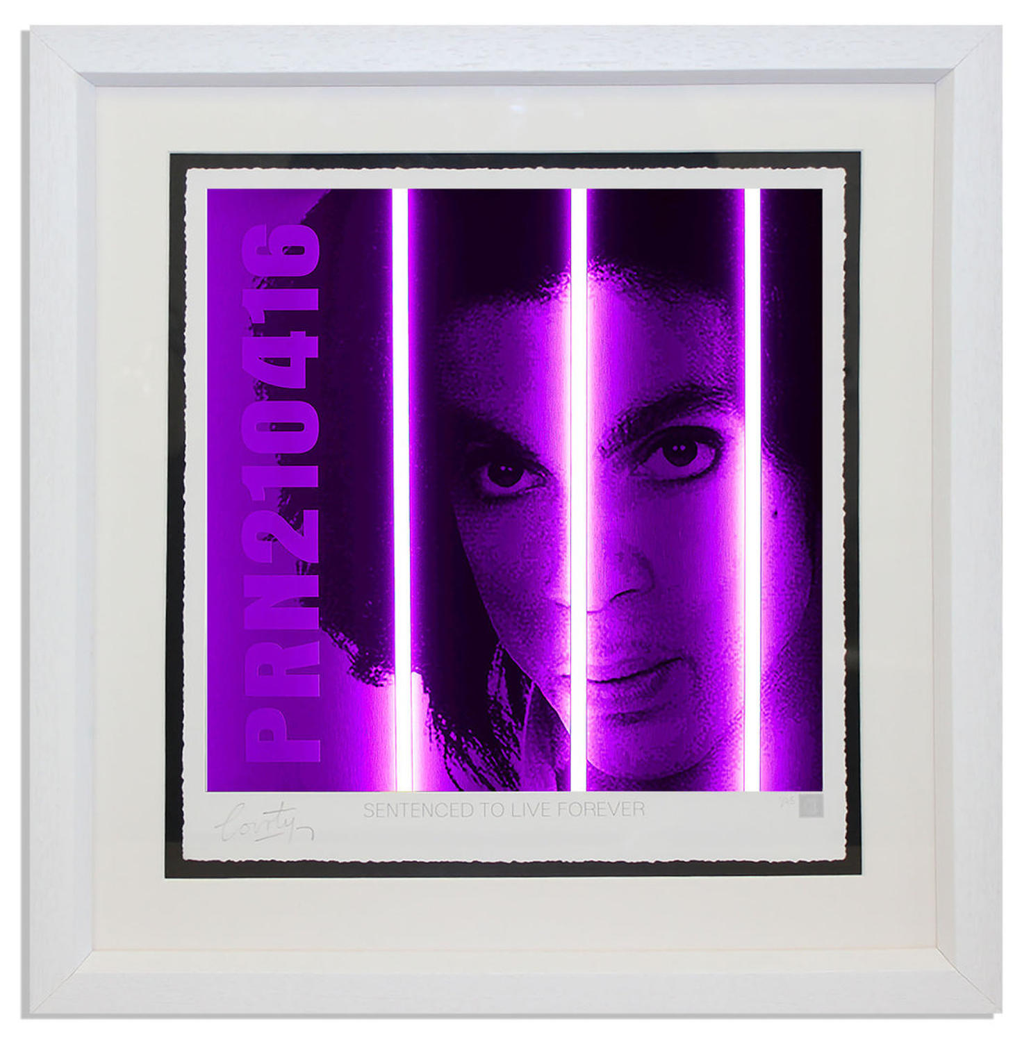Courty - Prince - Life Series framed art print