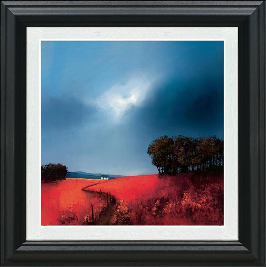 Barry Hilton Crimson Fields of Home Framed Canvas Art Print