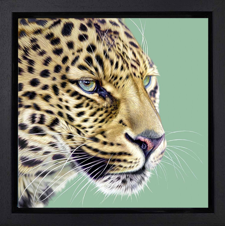 Game Face Framed Art Print Darryn Eggleton