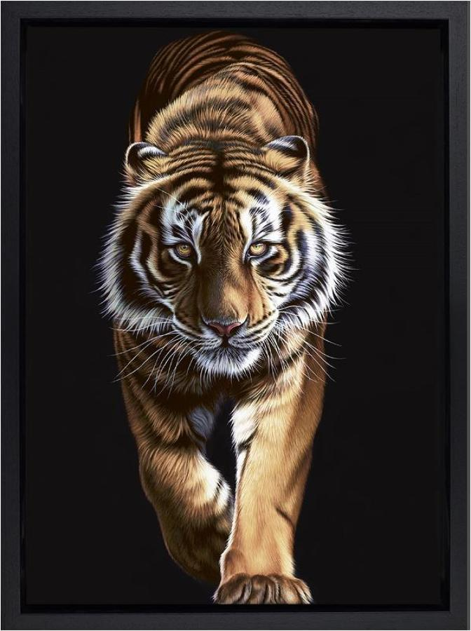 On the Prowl Framed Art Print Darryn Eggleton