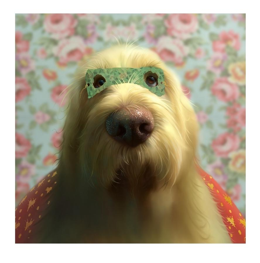 Super Spinone Art Print by Stephen Hanson