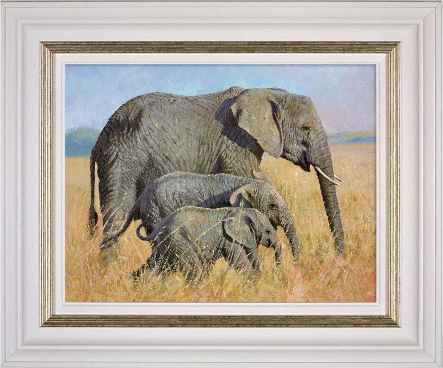 Family Outing Framed Art Print by Tony Forrest