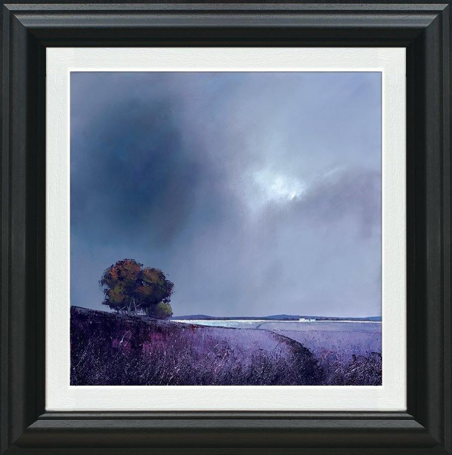 Barry Hilton Lavender Skies Framed Canvas Art Print