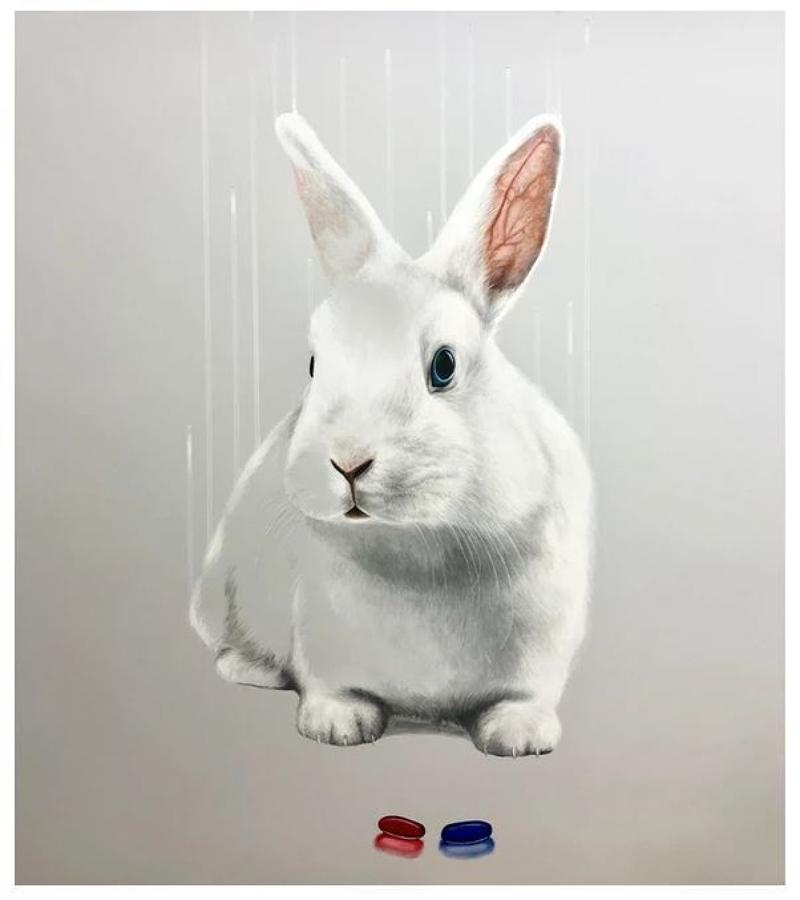 Down The Rabbit Hole Art Print By Louise McNaught