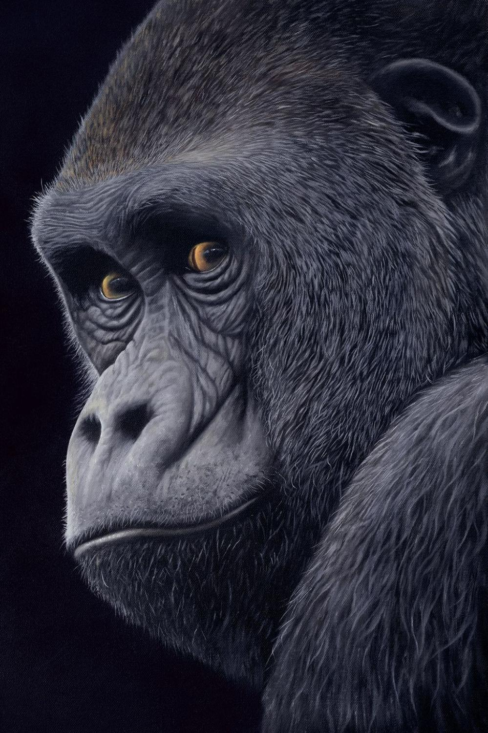 You Talking To Me? Framed Art Print by Jonathan Truss
