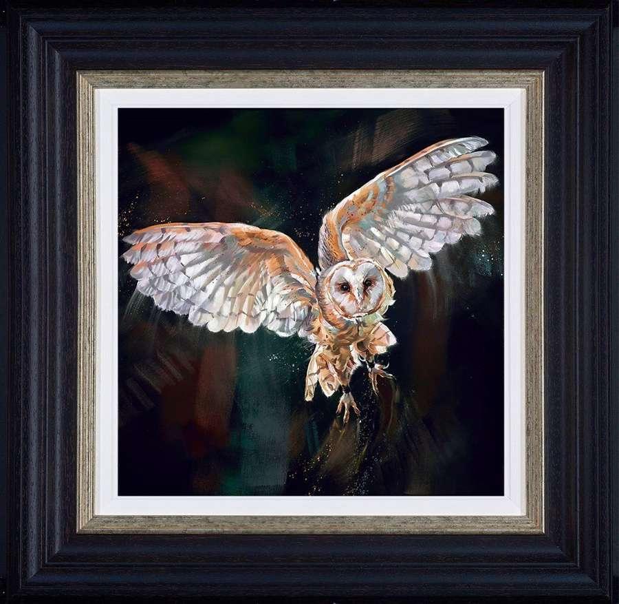 Night Flight - Framed  Art Print by Debbie Boon