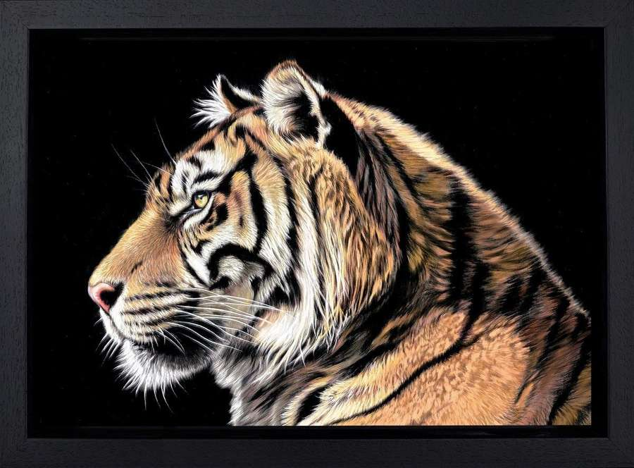 The Wild Side II - Framed Canvas Art Print by Darryn Eggleton