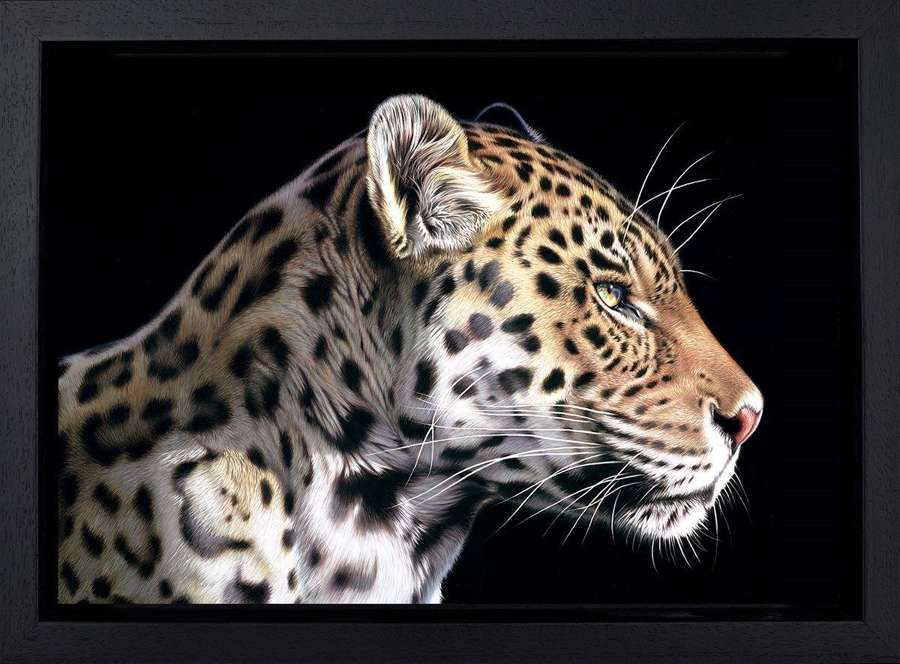 The Wild Side I - Framed Canvas Art Print by Darryn Eggleton
