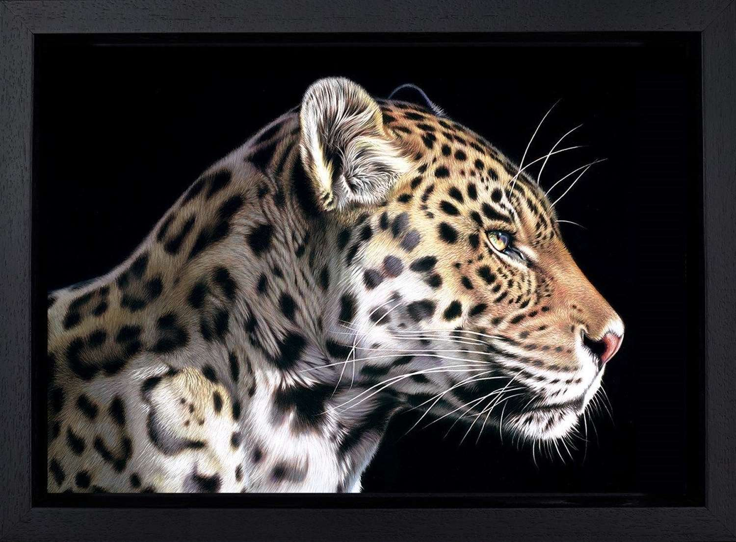 The Wild Side I - Framed Canvas Art Print by Darryn Eggleton