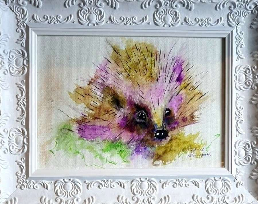 'Brillo The Hog' - Original Watercolour By Melanie Jacobs