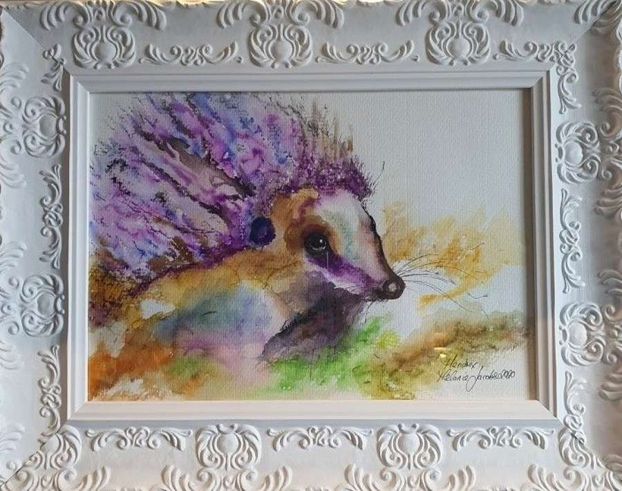 'Hendrix The Hog' - Original Watercolour By Melanie Jacobs