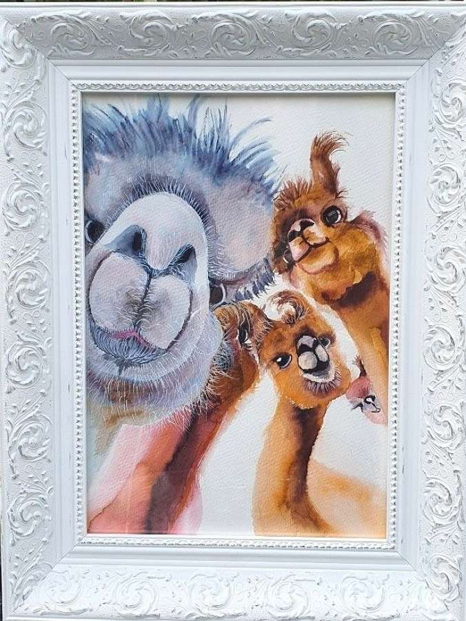 Photobombed - Original Watercolour By Melanie Jacobs