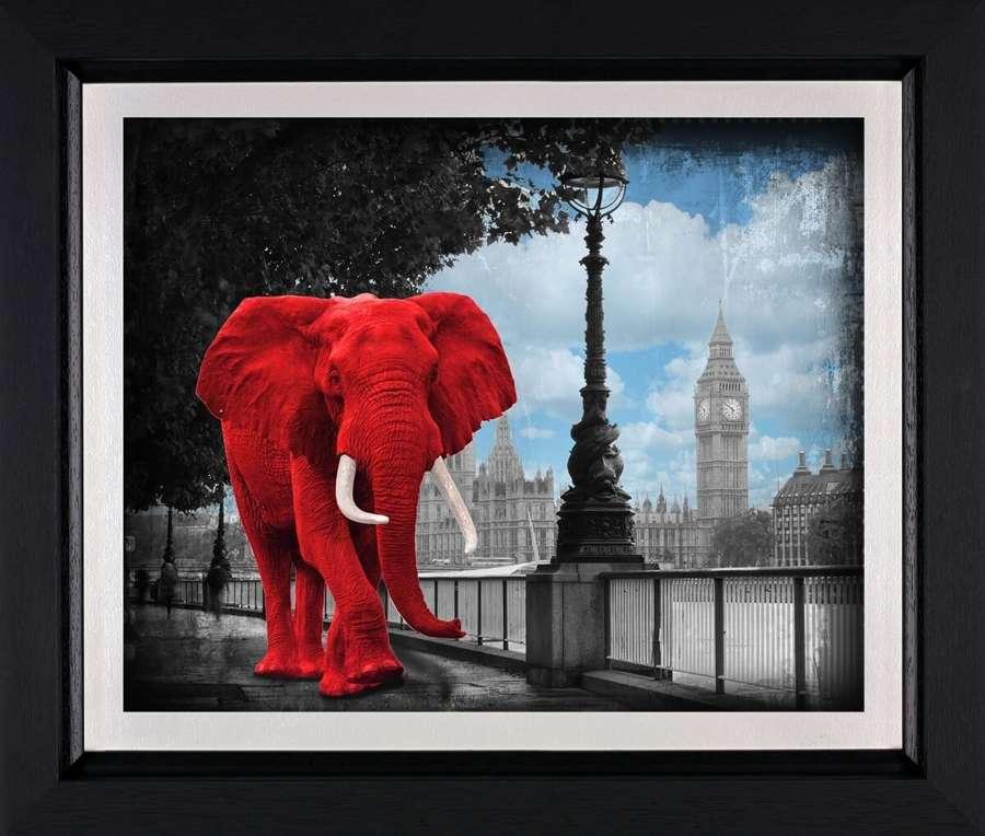 Westminster Wanderer - Framed Art Print by Lars Tunebo
