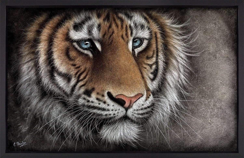 Brave Face - Framed Art Print by Colin Banks