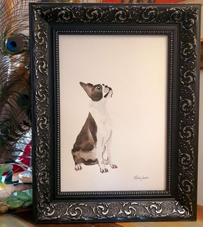 Solomon The Boston Terrier - Original Japanese Ink By Melanie Jacobs