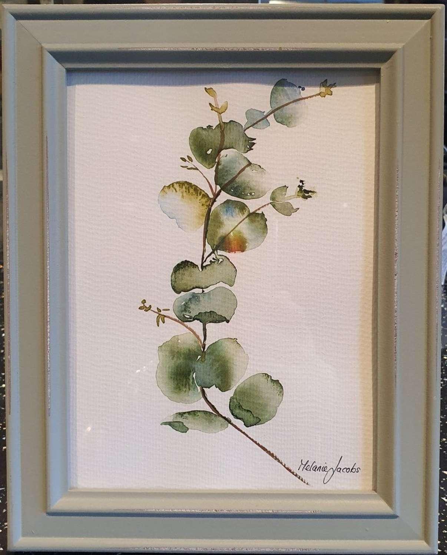 Eucalyptus II - Original Watercolour Painting by Melanie Jacobs
