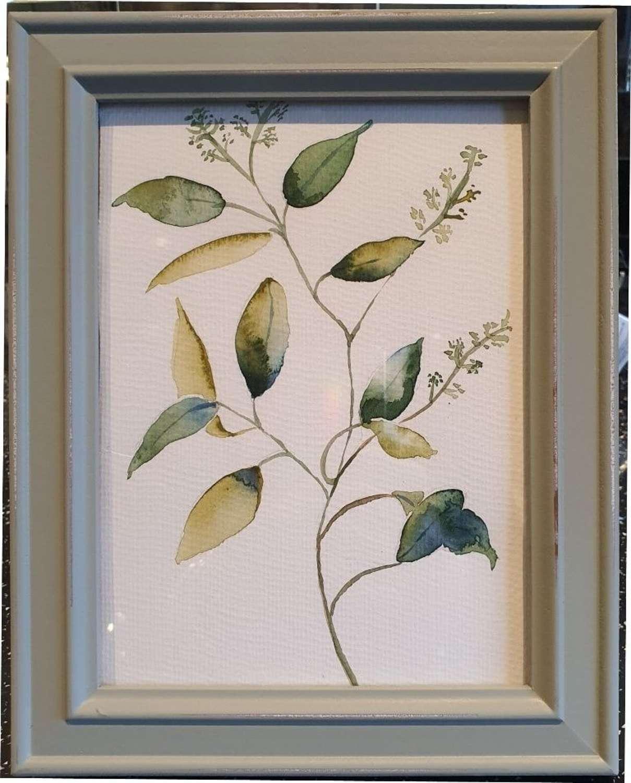 Eucalyptus III - Original Watercolour Painting by Melanie Jacobs