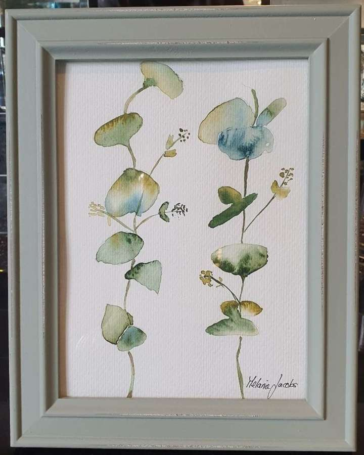 Eucalyptus IV - Original Watercolour Painting by Melanie Jacobs