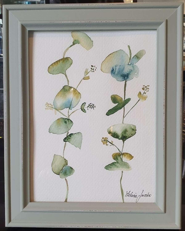 Eucalyptus IV - Original Watercolour Painting by Melanie Jacobs