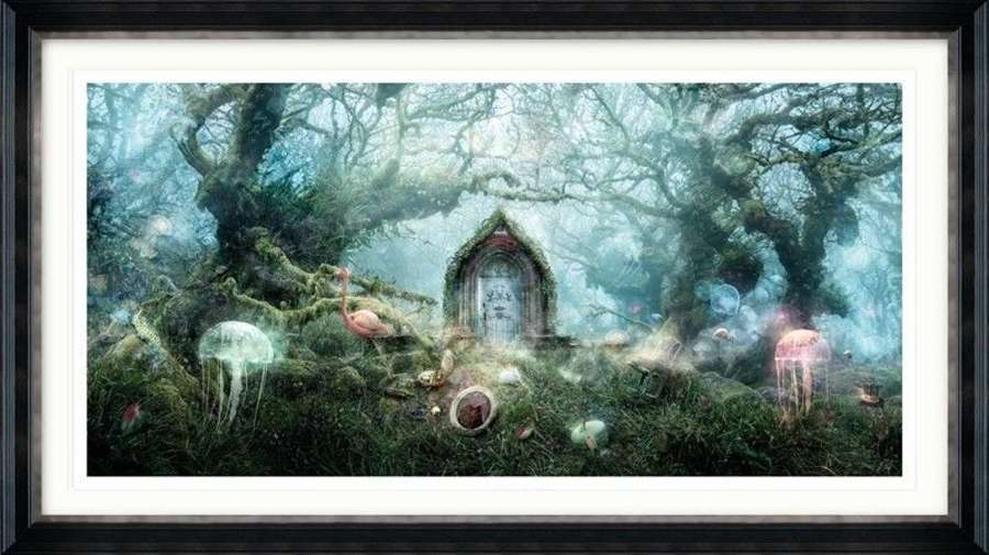 The Open Door (Alice In Wonderland) - Framed Art Print By Mark Davies