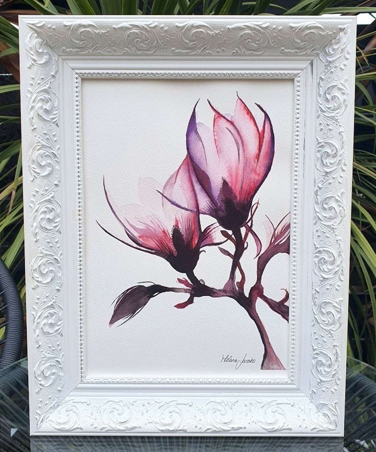 Lily Magnolia - Original Watercolour Painting by Melanie Jacobs