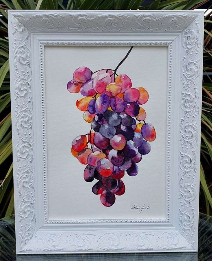 Grape Study II - Original Watercolour Painting by Melanie Jacobs