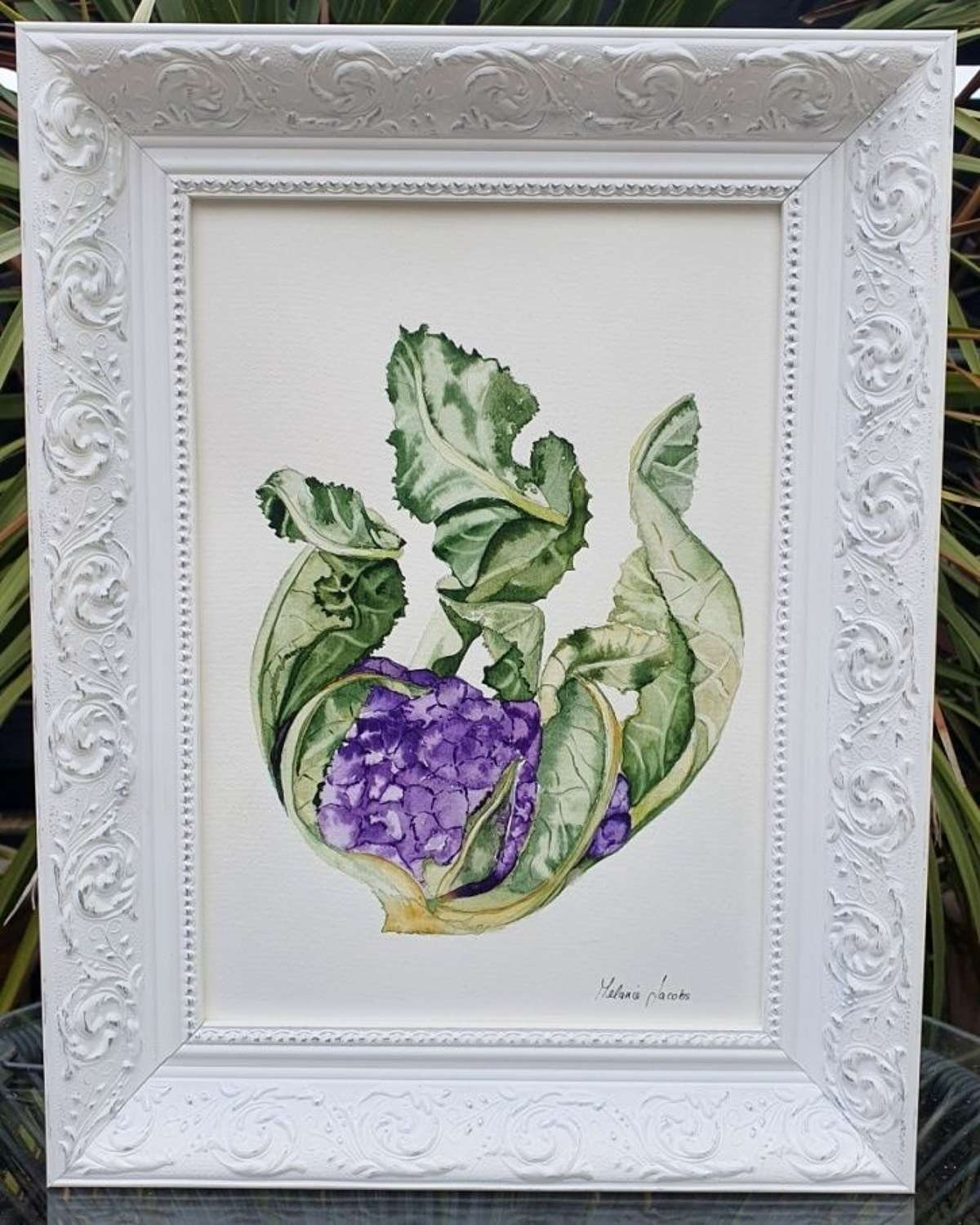 What A Beauty! - Original Watercolour Painting by Melanie Jacobs