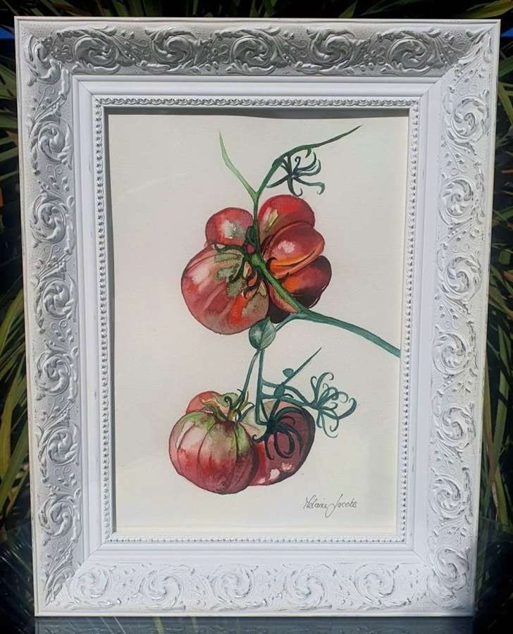 Heritage Tomato - Original Watercolour Painting by Melanie Jacobs