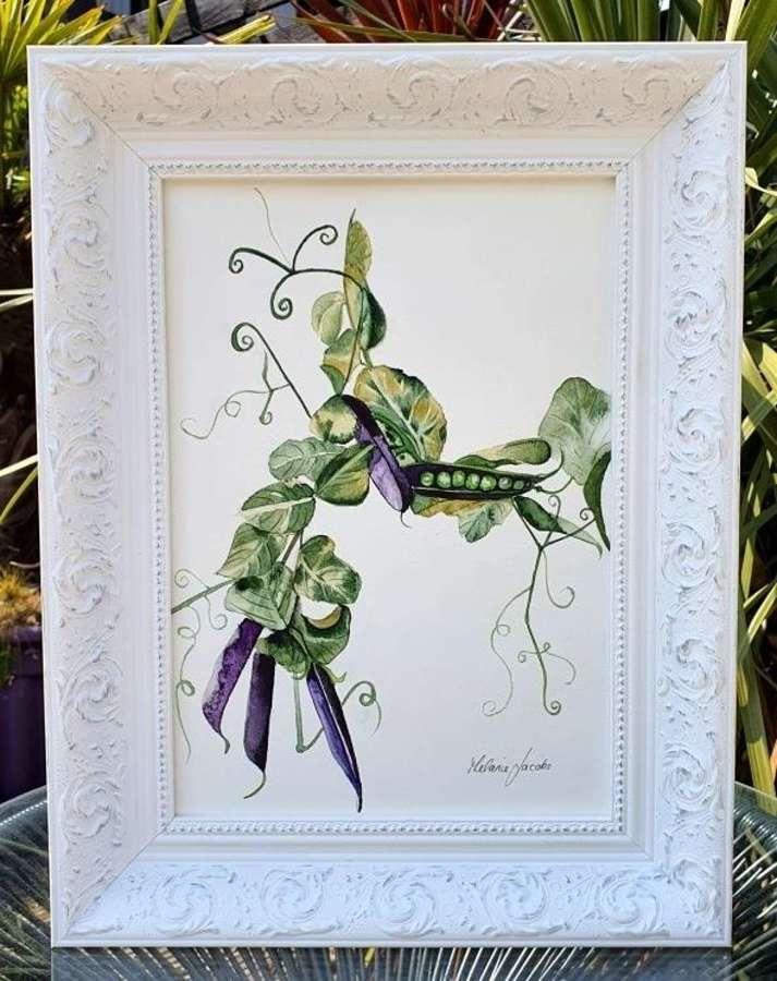 Purple Podded Peas - Original Watercolour Painting by Melanie Jacobs