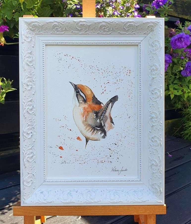 House Wren - Framed Watercolour Original Art  By Melanie Jacobs